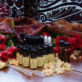 DIY Perfume Kit - Holiday Special - Artisan Aromatics - Gifts