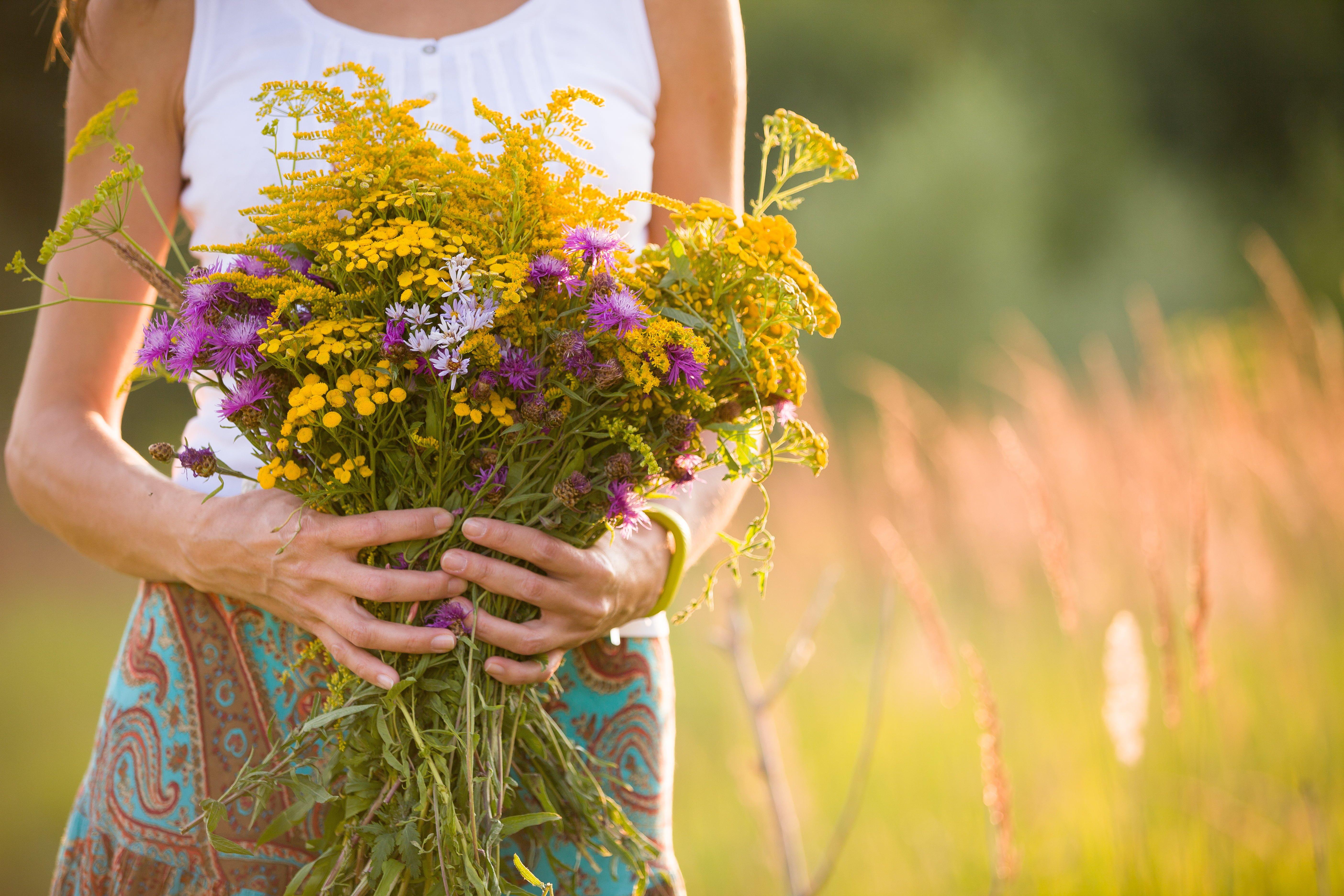 Essential Oils for Autumn