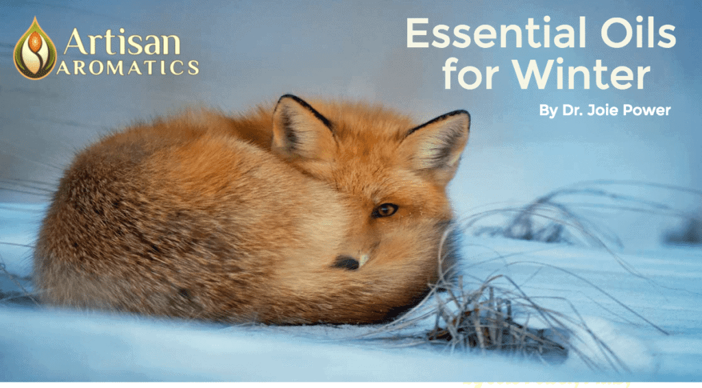 Winter Aromatherapy Article Dr. Joie Power header
