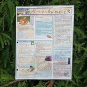 Aromatherapy Guide | Aromatherapy Study Guide | Aromatherapy Quick Study Guide