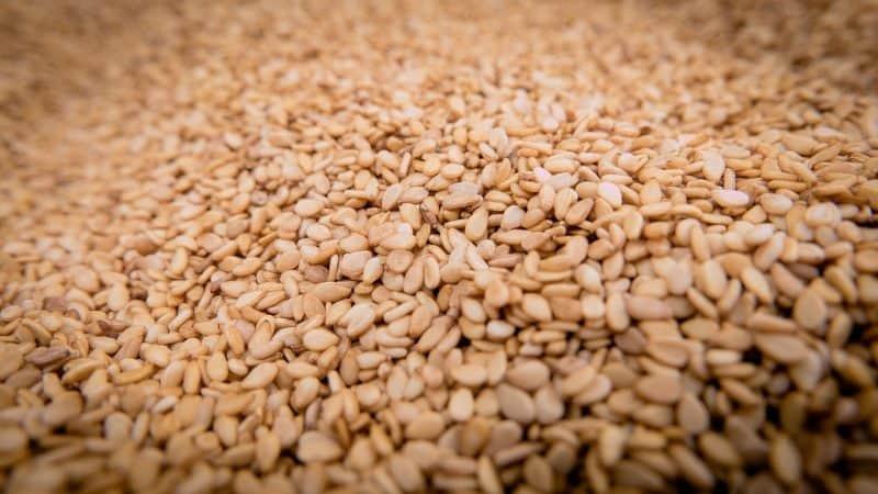 Sesame oil artisan aromatics