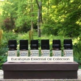 Eucalyptus Essential Oil Collection
